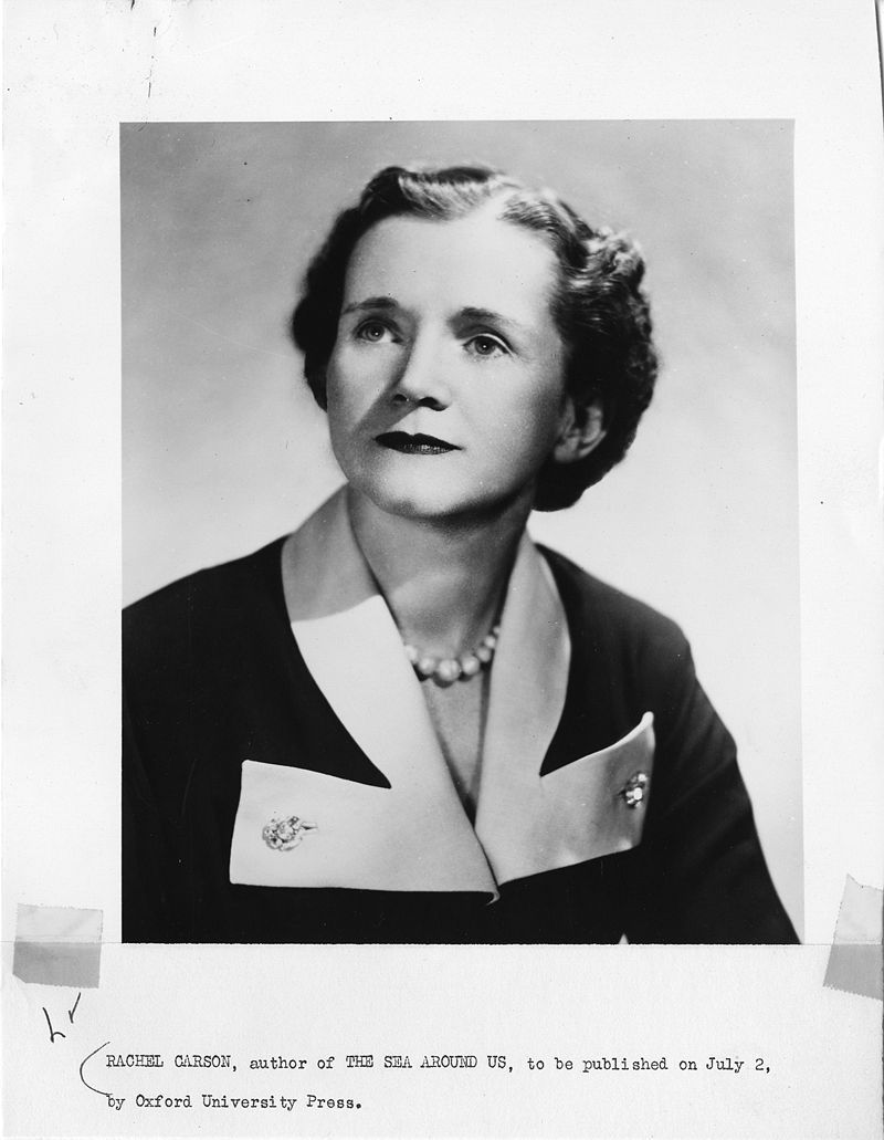 Biologist Rachel Louise Carson (1907-1964)