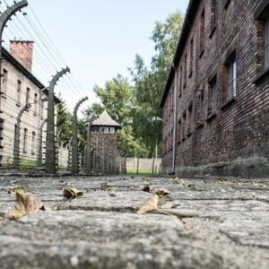 Auschwitz photograph
