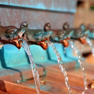 Water Is Life: Thousands Have Lived Without Love, Not One Without Water